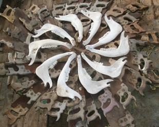 Roger McKindley: Bone mandala