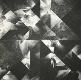 Gibson.Robyn.'Reflection#1'.Photo Lithography&Collage